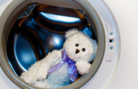Washing stuffed toys to provide allergy relief