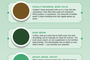 The Color Of Baby Poop And What It Means Infographic