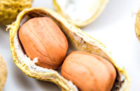 Could Early Exposure to Peanuts Help Avoid Allergy Later