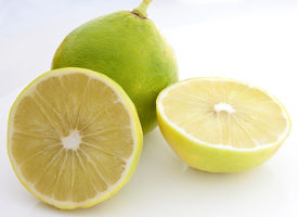 Bergamot Extract May Lower Your Cholesterol – Health Essentials from