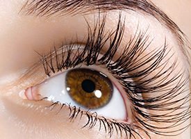 What You Should Know About Drug to Grow Thick Eyelashes