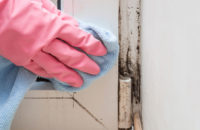 Cleaning mold in bathroom
