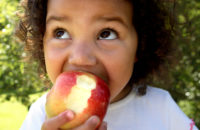 small child eating apple for fiber