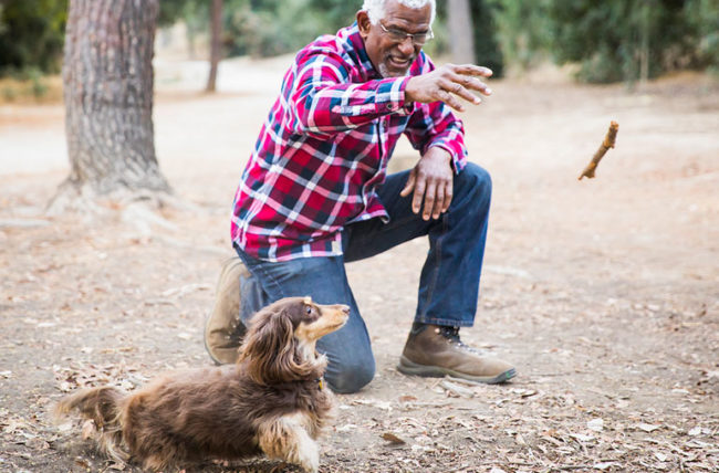 Elderly man playing with dog