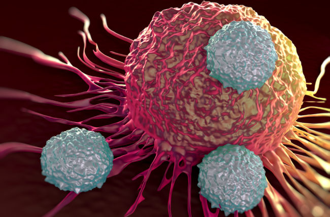 Is Your Immune System Unhealthy? How to Tell
