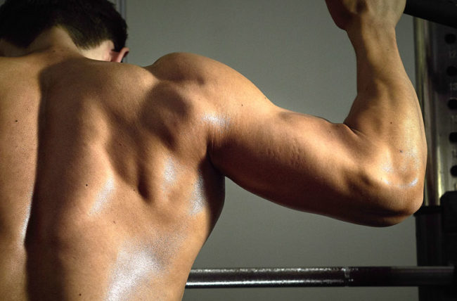 man lifting weights for biceps