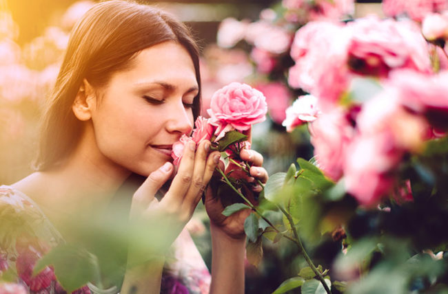 Stopping to smell the roses to have a happier outlook