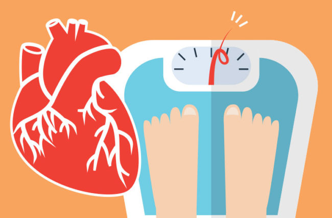 What is risk factor between weight and heart disease illustration