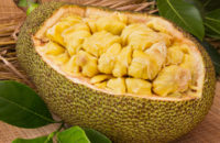 Jackfruit ready for eating