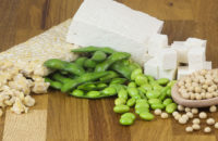 Vegetarian protein alternatives of tofu beand edamame